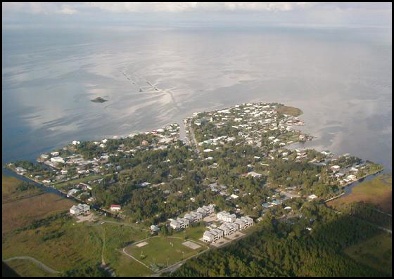ariel view of horseshoe beach, florida